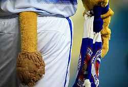 22 August 2017 -  EFL Cup Round Two - Reading v Millwall - A tail poking from the shorts worn by the Reading club mascot - Photo: Marc Atkins/Offside