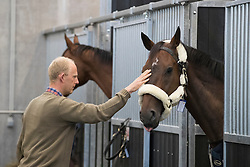 Fletch van't Verahof, Jef Desmedt<br /> Departure of the horses to the Rio Olympics from Liege Airport - Liege 2016<br /> © Hippo Foto - Dirk Caremans<br /> 30/07/16