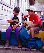 Daniel Hansen and Terrence Jamestown with puppies, village of Angoon, Admiralty Island, Alaska.<br /> Please note: Use of this photo requires that a small extra model fee be paid to Daniel Hansen and Terrence Jamestown, the children in the photo. Please contact Fred Hirschmann for details. Thank you.