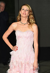 Laura Dern attending the european premiere of Star Wars: The Last Jedi held at The Royal Albert Hall, London.