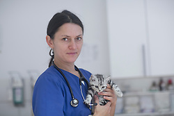 Veterinarian carrying cat, Breisach, Baden-Wuerttemberg, Germany