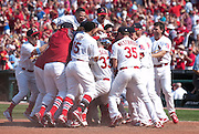 19 June 2011                St. Louis Cardinals second baseman Skip Schumaker is swarmed by teammates as he crosses home plate after hitting a walk-off home run in the bottom of the ninth inning to win the game for the Cardinals. The St. Louis Cardinals defeated the Kansas City Royals 5-4 in the final game of a three-game series on Sunday June 19, 2011 at Busch Stadium in downtown St. Louis.