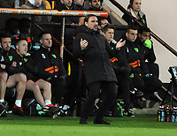 Football - 2018 / 2019 Sky Bet EFL Championship - Norwich City vs. Reading<br /> <br /> Norwich Manager, Daniel Farke watches another chance go by, at Carrow Road.<br /> <br /> COLORSPORT/ANDREW COWIE