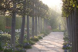 The spring walk at Sissinghurst