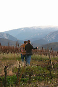 David Serodes Domaine d'Antugnac. Limoux. Languedoc. Last rays of light a late winter evening. France. Europe. Vineyard. Mountains in the background.