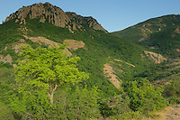 The hills of the Madzharovo canyon, Eastern Rhodope mountains, Bulgaria