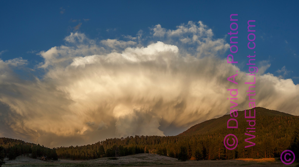 Dramatic thunderstorm passes over mountain meadow and Los Griegos Peak in the Jemez Mountains, © David A. Ponton