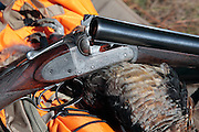 Webley Screw Grip Shotgun and Ruffed Grouse