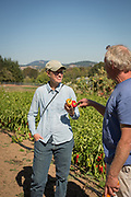 Frank Morton discusses his line of peppers with Julie Dawson at his Wild Garden Seed Farm in Philomath, OR.