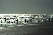 Art walking on the beach at Galveston Beach with a seagull flying over. Solitary man, a peaceful scene.