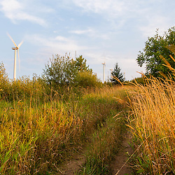 A trail in a field next to the Mars Hill wind farm in Mars Hill, Maine. The International Appalachian Trail traverses the ridge on Mars Hill.