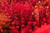 INDIA - HOLI