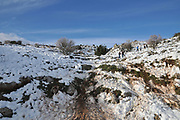 Snowscape. Photographed in the Golan Heights, Israel on the way to Mount Hermon in February