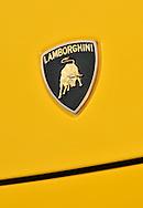 2005 Lamborghini Gallardo (Giallo Midas) .Logo, badge.Corporate Drive Day with Octane Events & The Supercar Club.Mornington Pennisula, Victoria .6th-7th of August 2009 .(C) Joel Strickland Photographics