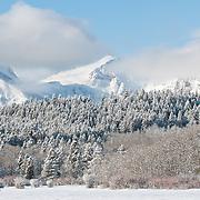 winter in glacier national park, east glacier park, montana, froggly flats