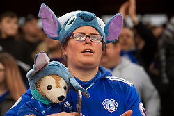 A Cardiff City fan in the crowd