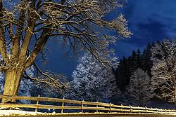 THEMENBILD - Bäume bedeckt mit Neuschnee im Abendlicht, aufgenommen am 30. November 2017, Kaprun, Österreich // Trees with fresh snow in the evening light on 2017/11/30, Kaprun, Austria. EXPA Pictures © 2017, PhotoCredit: EXPA/ Stefanie Oberhauser