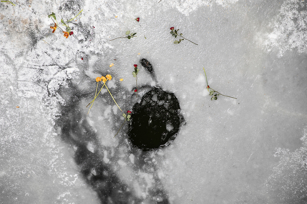 A hole in the ice where the carcass of a swan lay for several days in the frozen Landwehr Canal in Berlin, Germany, February 13, 2021. As the canal froze by passers lay flowers near it. The area was closed by rescue services to prevent from people to gather around it. Germany is experiencing extreme winter weather as part of a polar vortex, with temperatures going well beneath freezing.