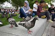 Around the Southbank, a great number of pigeons hang around visitors for scraps of food. The South Bank is a significant arts and entertainment district, and home to an endless list of activities for Londoners, visitors and tourists alike.