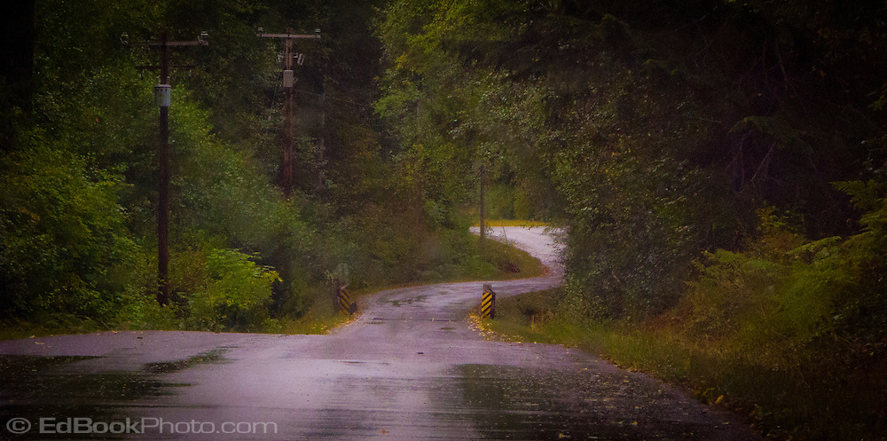 a winding country lane in rural Lewis County, Washington, USA