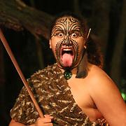 tamaki tours over night marae stay
