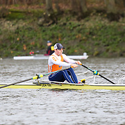 All Photos - Scullers Head 2019
