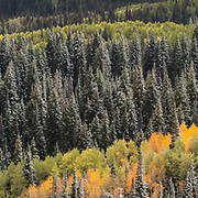 Spring Winter Fall. Ultra high resolution panoramic for large format printing.