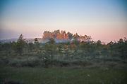 "The rising sun colors the trunks of scots pines red in raised bog of Ance, nature reserve ""Ances purvi un meži"", Latvia Ⓒ Davis Ulands   davisulands.com"