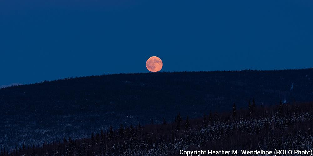"""""""Rise""""<br /> Wolf Moon Rising<br /> Penumbral Lunar Eclipse<br /> 10 Jan 20<br /> Borealis Basecamp<br /> Fairbanks, Alaska"""