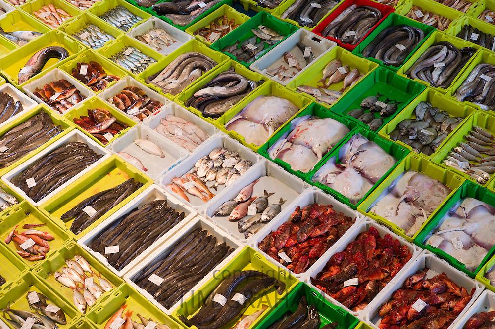Fish market auction of fresh caught fish at Confradia de Pescadores de Luarca, Confederation of Luarca Fishermen, Puerto Luarca, Spain