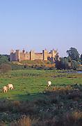 AYBPE0 Framlingham castle Suffolk England