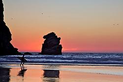Beach, Morro Bay, California