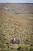 Gauchos on horseback cross plain, Estancia Huechahue, Patagonia, Argentina, South America