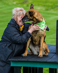 Pictured: Christine Grahame and Sasha<br /> <br /> SNP MSP Christine Grahame was joined at Edinburgh Cat and Dog home by animal welfare organisations and eight-year-old Dutch Shepherd Sasha to highlight her members bill to curb irresponsible dog breeding and buying. <br /> Ger Harley | EEm 4 May 2018