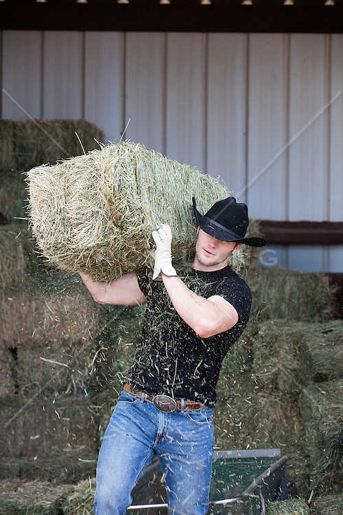 rugged cowboy carrying a hay bale in a barn