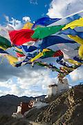 Namgyal Tsemo Monastery, Leh, Ladakh, India