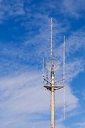 Microwave dish antennas on radio communications  monopole tower for the cellular telephone system. <br />