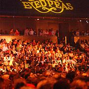 NLD/Amsterdam/20050518 - Concert Black Eyed Peas, .publiek, bord, reclame, tribune