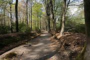 APELDOORN, 09-06-2021 , Kroondomein Het Loo<br /> <br /> Kroondomein Het Loo is een landgoed op de Veluwe, in de Nederlandse provincie Gelderland. Het is het grootste landgoed van Nederland en omvat ongeveer 10.400 hectare.<br /> <br /> Op de foto:  Paleispark