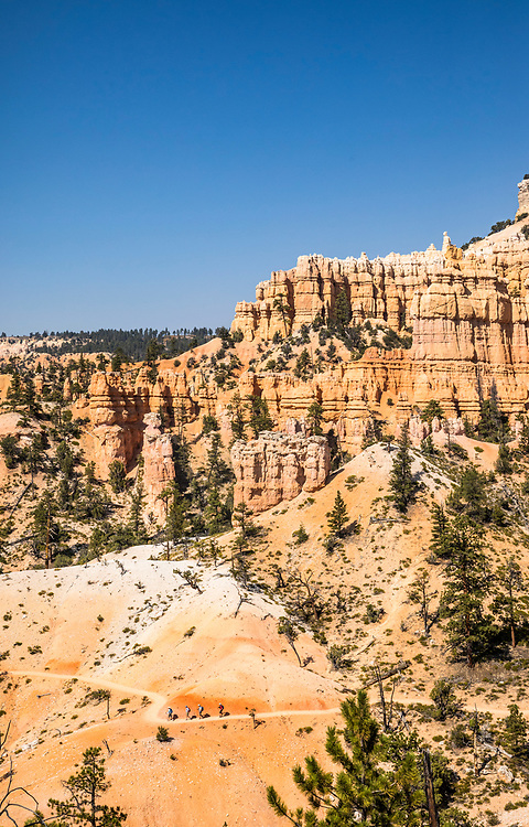 A group of four people hiking the Fairyland Loop Trail in Bryce Canyon National Park, Utah, USA.