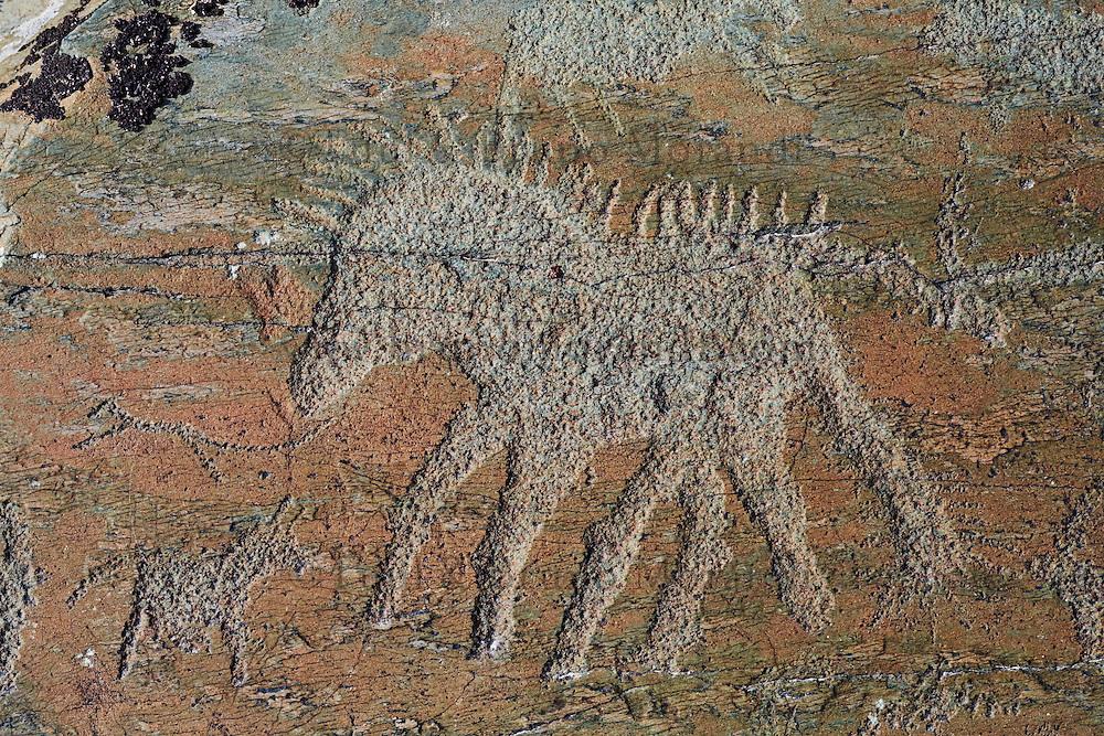 Mongolie, province de Bayan-Ulgii, région de l'ouest, Parc national de Tavan Bogd, site des petroglyphes dans les montagnes de l'Altai Mongol, représentant  // Mongolia, Bayan-Ulgii province, western Mongolia, National Parc of tavan Bogd, petroglyphes in the Mongolian Altai mountains
