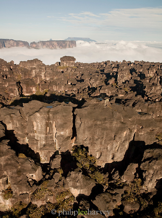 The bizarre rock formations at the edge of Mount Roraima, towering above the clouds in Venezuela