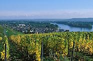 Rhein :: The River Rhine, Germany