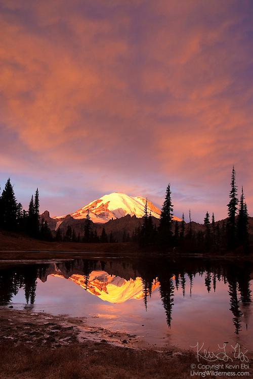 Mount Rainier, under a fiery sunrise, is reflected in Tipsoo Lake, located near Chinook Pass, Washington.