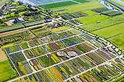Nederland, Gelderland, Kesteren, 30-09-2015; Betuwe, kwekerij van bomen, struiken, heesters en planten.<br /> Nursery of trees, bushes, shrubs and plants.<br /> luchtfoto (toeslag op standard tarieven);<br /> aerial photo (additional fee required);<br /> copyright foto/photo Siebe Swart