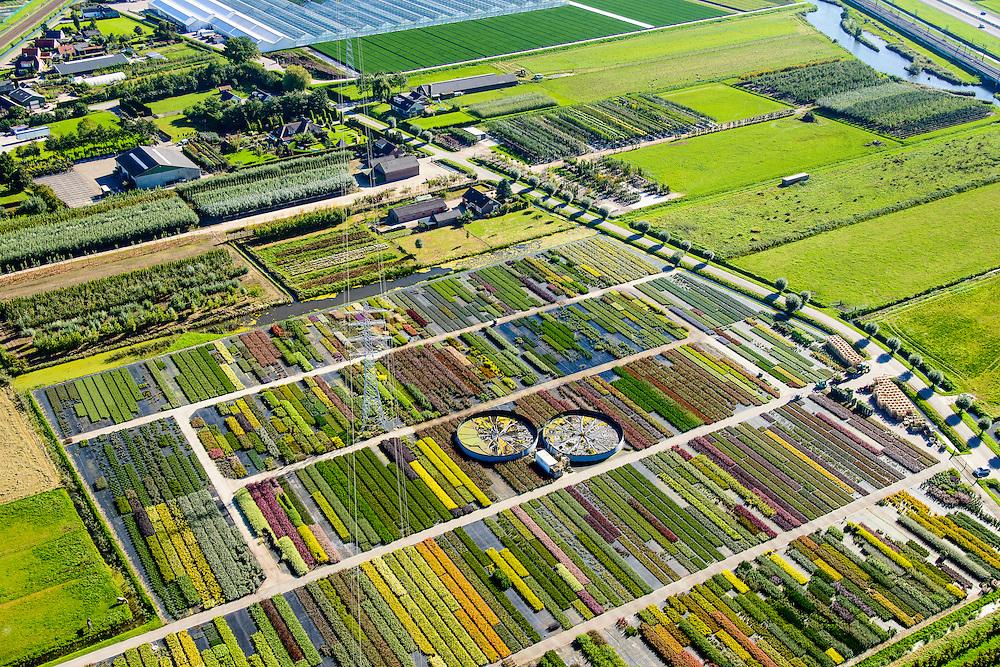 Nederland, Gelderland, Kesteren, 30-09-2015; Betuwe, kwekerij van bomen, struiken, heesters en planten.<br /> Nursery of trees, bushes, shrubs and plants.<br /> luchtfoto (toeslag op standard tarieven);<br /> aerial photo (additional fee required);<br /> copyright foto/photo Siebe Swart
