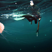 """Bryan Heron tries to avoid the long tentacles of jellyfish while preparing for a dive. Several minutes of breath exercises at the surface proceed each dive. """"Blood in the water - Tentacles"""""""