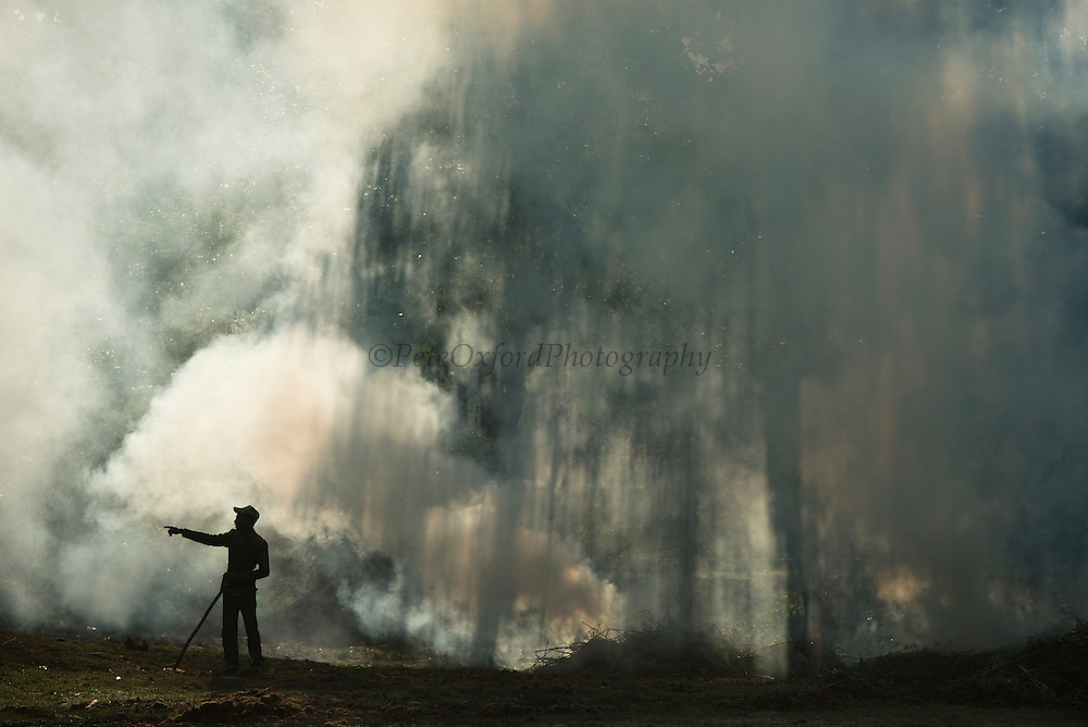 Controlled fire<br /> Kaziranga National Park<br /> Assam<br /> North East India<br /> UNESCO World Heritage Site