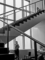 Lines of Communication on the stairs at MoMA, New York City