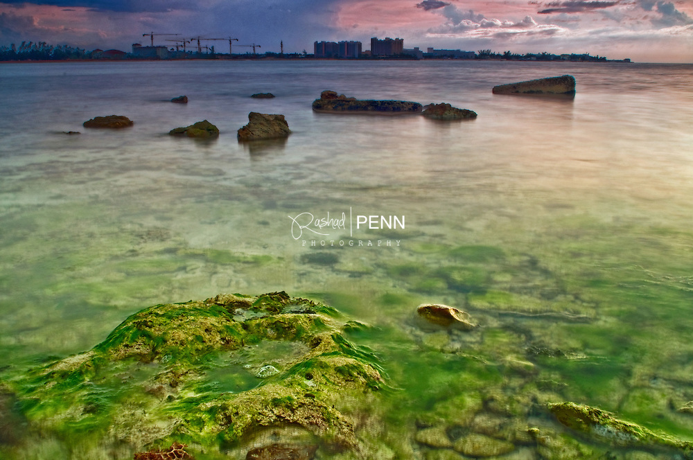 Green moss grows in the salty water of a sandy and rocky beach<br /> <br /> <br /> Fine Art Photography - The Bahamian Seascape